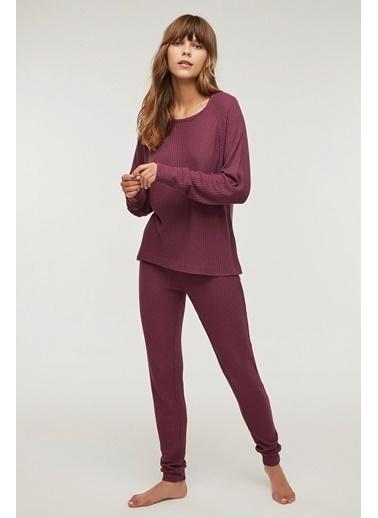 Penti Waffle Pijama Takımı Renkli